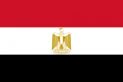 Egyptian patent office and WIPO congratulate SMAS-IP on their successful MIA under PCT meeting.
